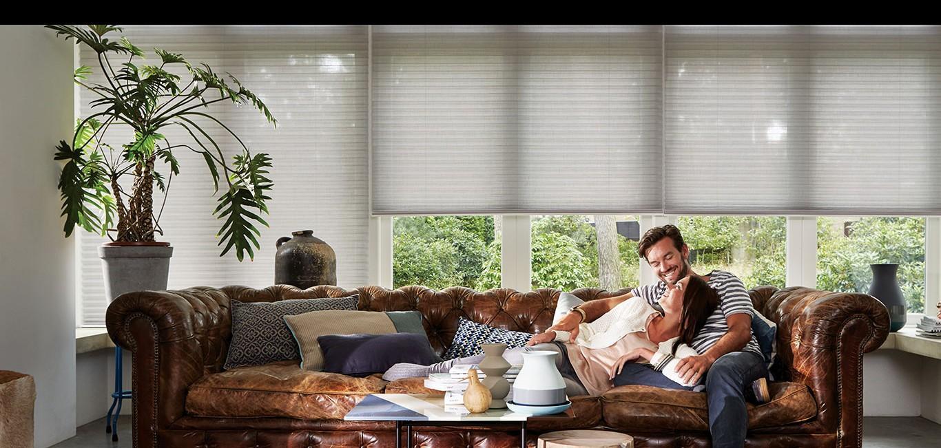 Cortina Duette® - Hunter Douglas -  Sala de estar